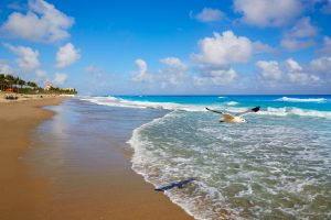 Where are great examples of palm beach florida real estate for sale?